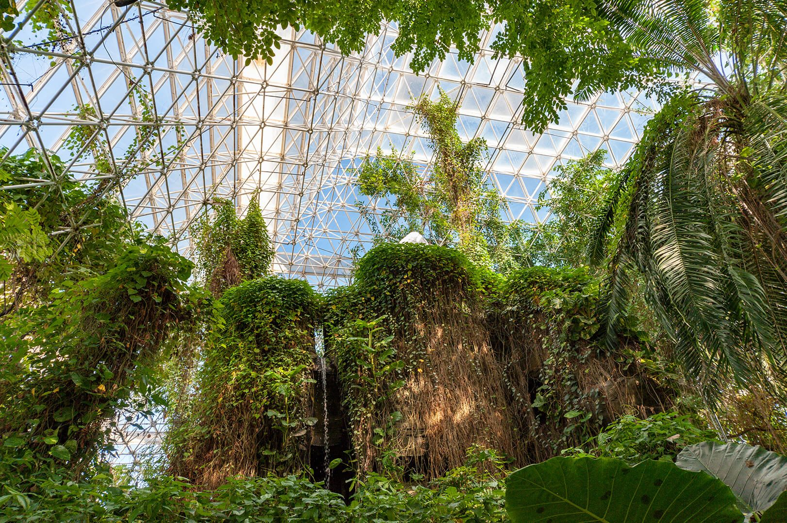 Biosphere 2's rainforest biome features steep, foliage-covered cliffs and a waterfall.